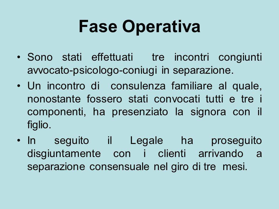 Fase OperativaSono stati effettuati tre incontri congiunti avvocato-psicologo-coniugi in separazione.