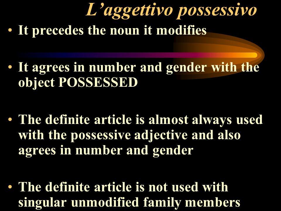 L'aggettivo possessivo
