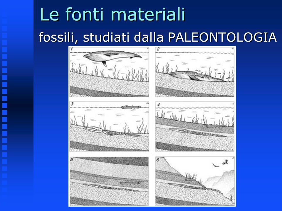 Le fonti materiali fossili, studiati dalla PALEONTOLOGIA