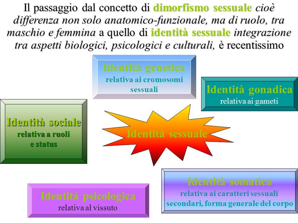 relativa ai caratteri sessuali secondari, forma generale del corpo