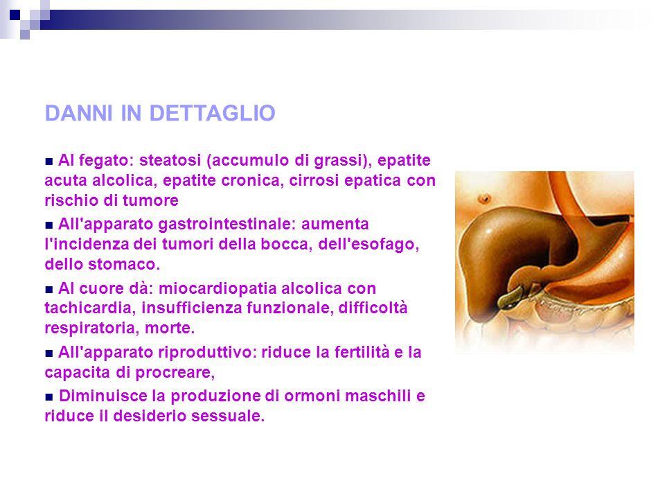 DANNI IN DETTAGLIO Al fegato: steatosi (accumulo di grassi), epatite acuta alcolica, epatite cronica, cirrosi epatica con rischio di tumore.