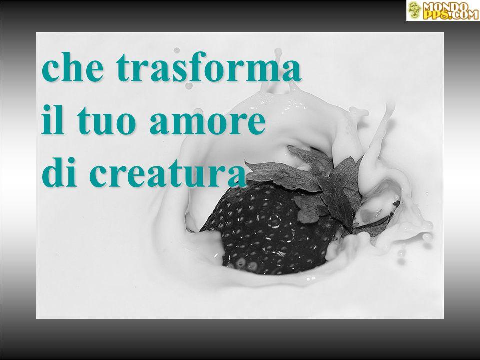 che trasforma il tuo amore di creatura