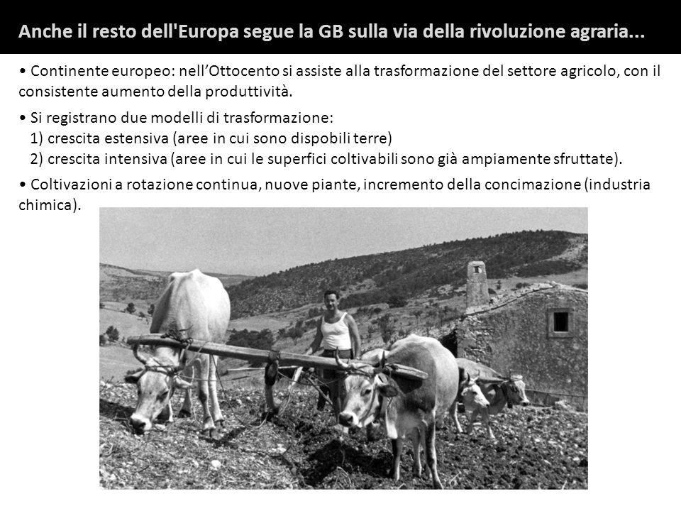 Anche il resto dell Europa segue la GB sulla via della rivoluzione agraria...