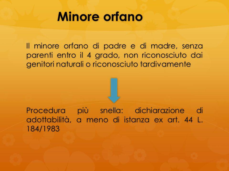 Minore orfano
