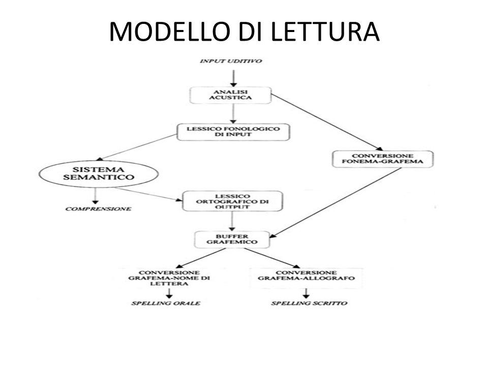 MODELLO DI LETTURA