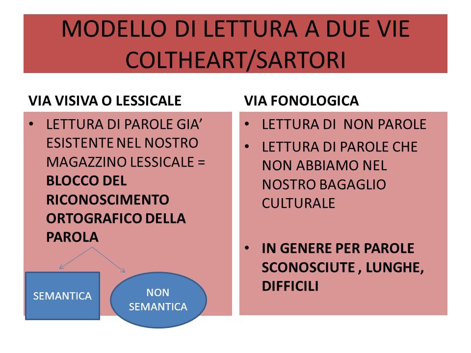 MODELLO DI LETTURA A DUE VIE COLTHEART/SARTORI