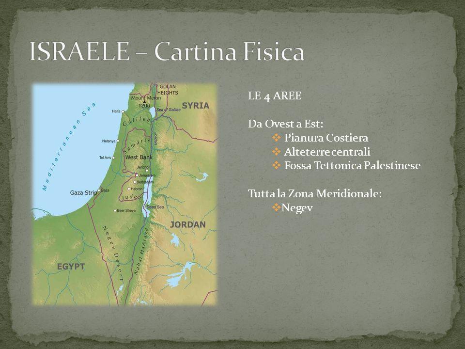 ISRAELE – Cartina Fisica