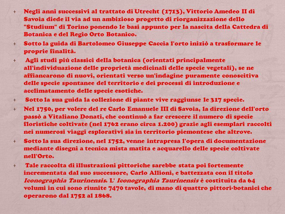 Negli anni successivi al trattato di Utrecht (1713), Vittorio Amedeo II di Savoia diede il via ad un ambizioso progetto di riorganizzazione dello Studium di Torino ponendo le basi appunto per la nascita della Cattedra di Botanica e del Regio Orto Botanico.