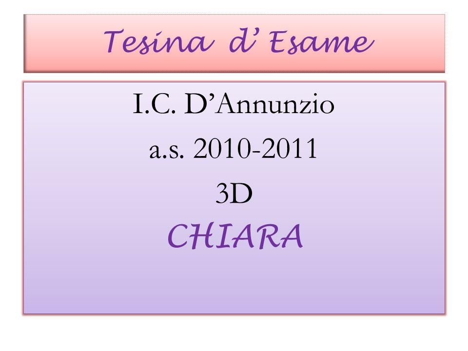 I.C. D'Annunzio a.s. 2010-2011 3D CHIARA