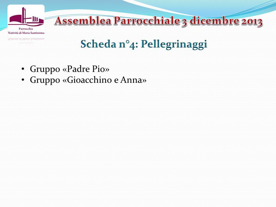 Assemblea Parrocchiale 3 dicembre 2013 Scheda n°4: Pellegrinaggi