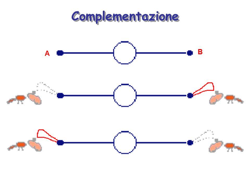 Complementazione A B