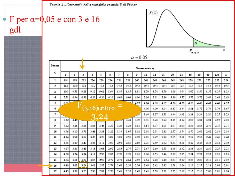 F per α=0,05 e con 3 e 16 gdl F(3,16)critico = 3,24