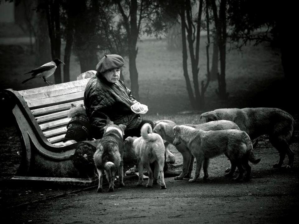 Articolo 111 - Ogni atto che comporti l uccisione di un animale senza necessità è biocidio, cioè un delitto contro la vita.