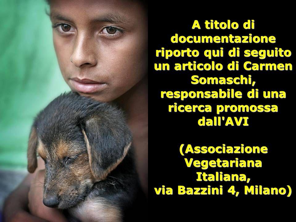 A titolo di documentazione riporto qui di seguito un articolo di Carmen Somaschi, responsabile di una ricerca promossa dall AVI (Associazione Vegetariana Italiana, via Bazzini 4, Milano)