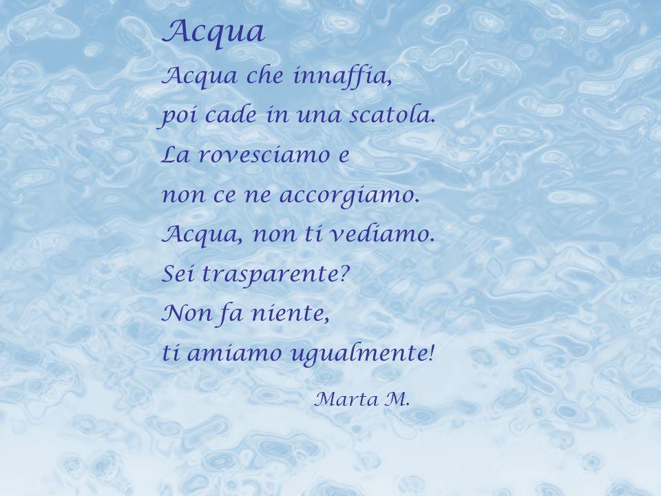 Acqua Marta M. Acqua che innaffia, poi cade in una scatola.