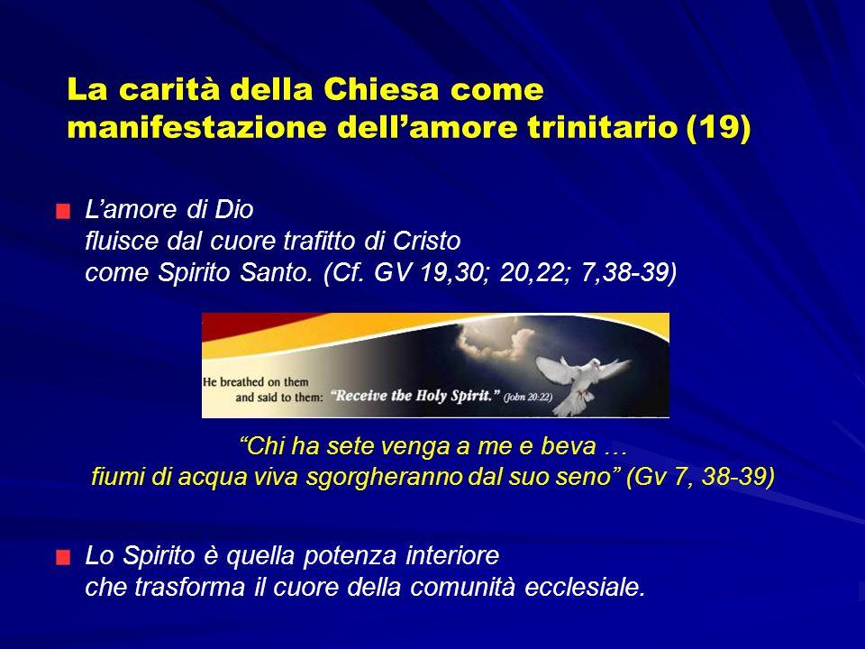 La carità della Chiesa come manifestazione dell'amore trinitario (19)