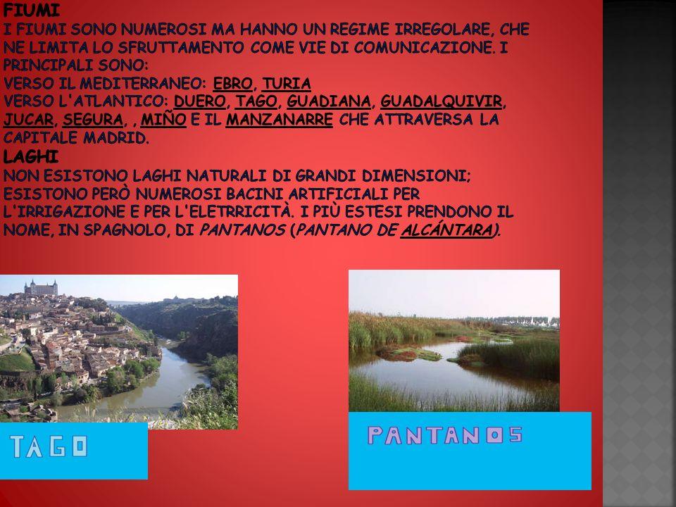 Fiumi I fiumi sono numerosi ma hanno un regime irregolare, che ne limita lo sfruttamento come vie di comunicazione.