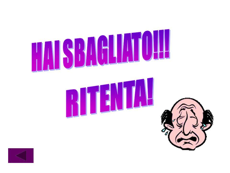 HAI SBAGLIATO!!! RITENTA!