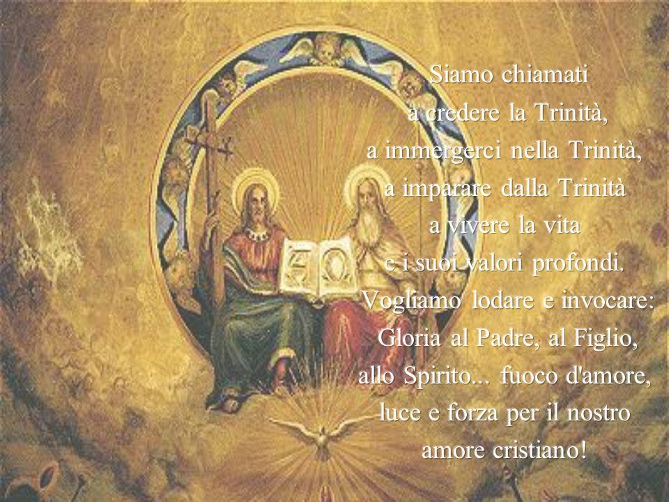 Siamo chiamati a credere la Trinità, a immergerci nella Trinità,