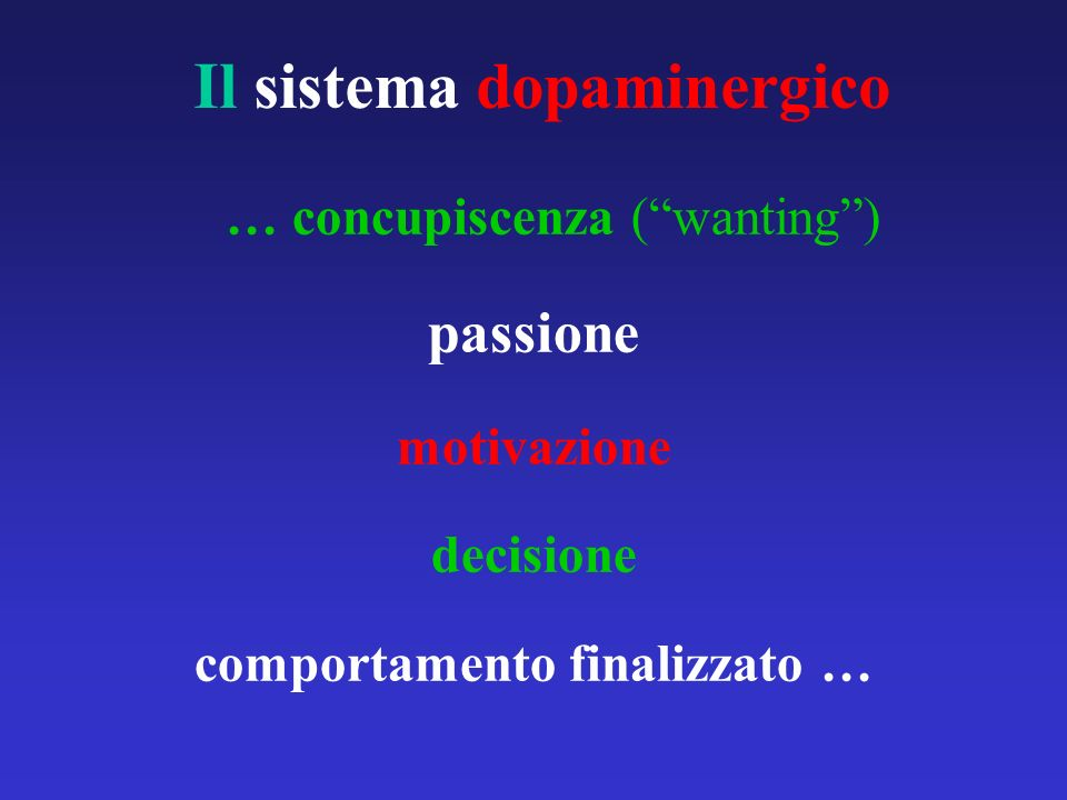 Il sistema dopaminergico