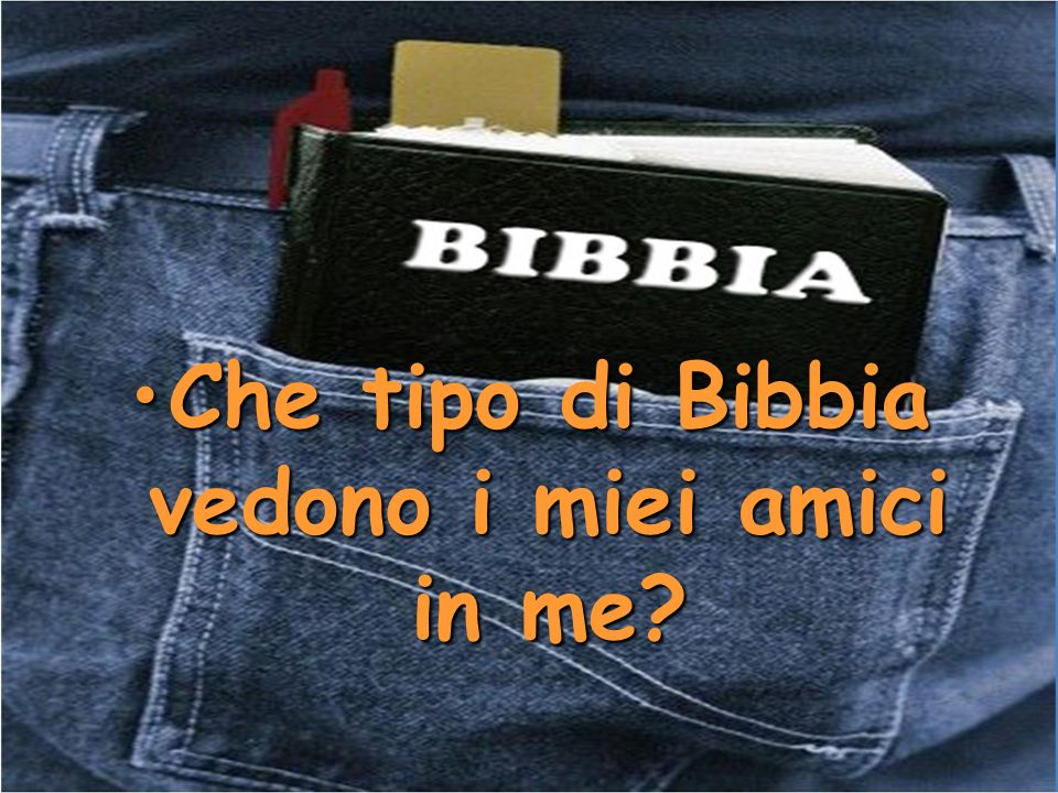 Che tipo di Bibbia vedono i miei amici in me