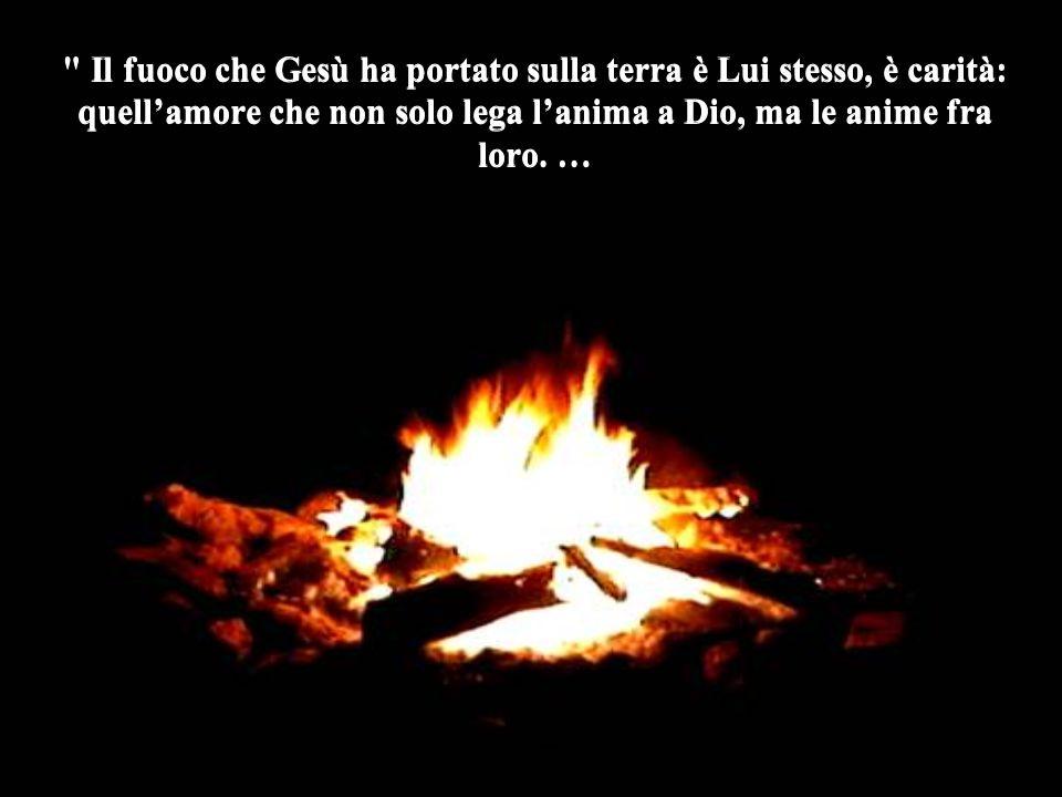 Il fuoco che Gesù ha portato sulla terra è Lui stesso, è carità: quell'amore che non solo lega l'anima a Dio, ma le anime fra loro.