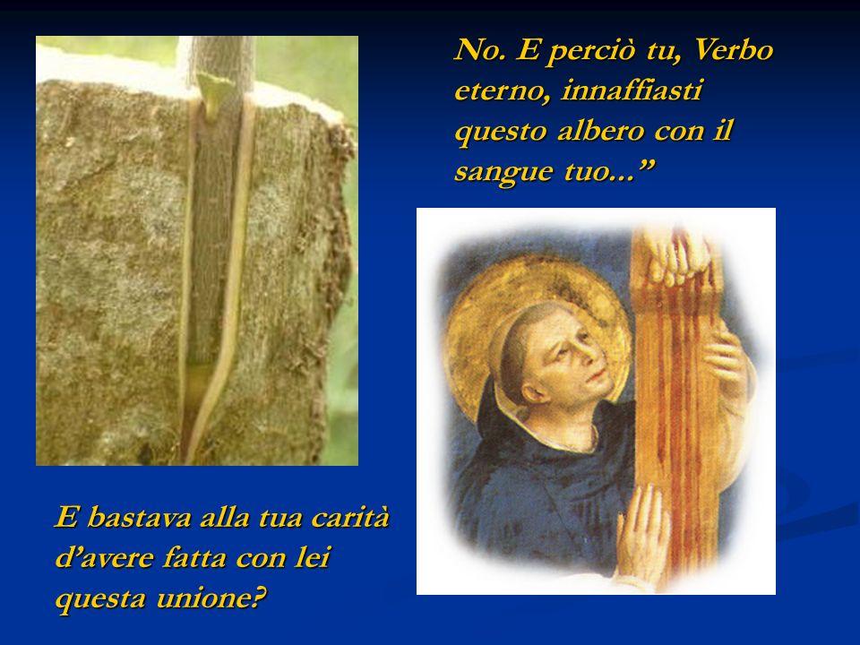No. E perciò tu, Verbo eterno, innaffiasti questo albero con il sangue tuo...