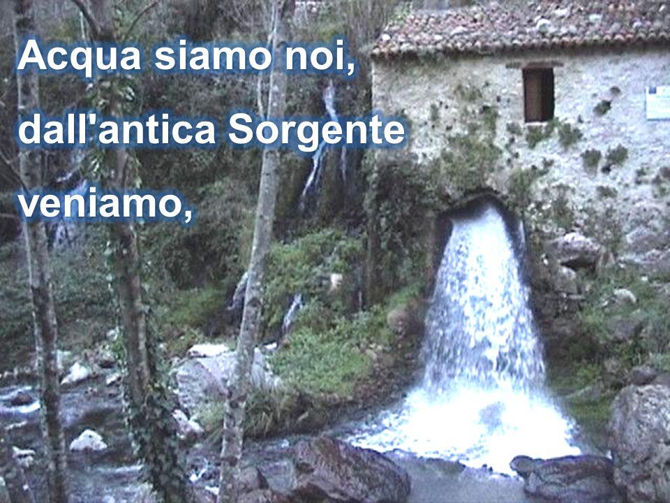 Acqua siamo noi, dall antica Sorgente veniamo,