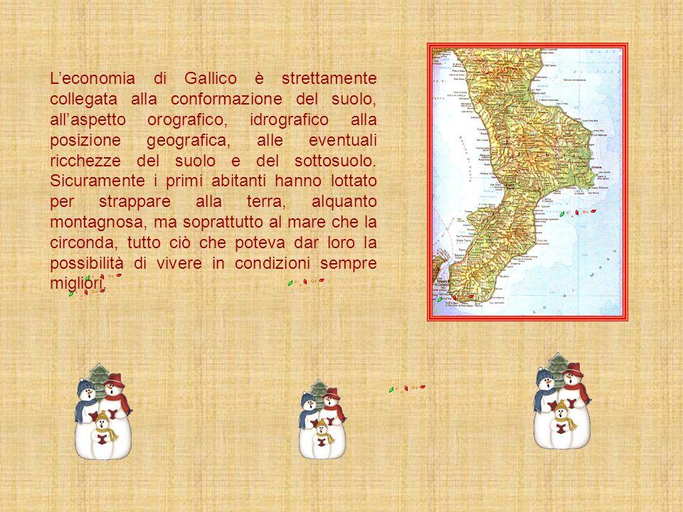 L'economia di Gallico è strettamente collegata alla conformazione del suolo, all'aspetto orografico, idrografico alla posizione geografica, alle eventuali ricchezze del suolo e del sottosuolo.