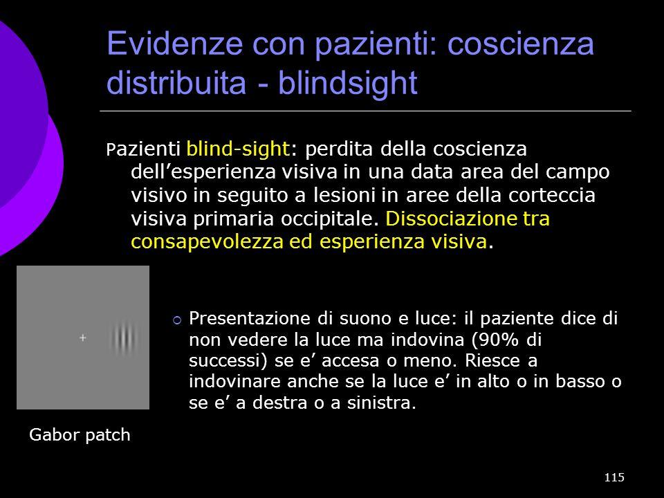 Evidenze con pazienti: coscienza distribuita - blindsight