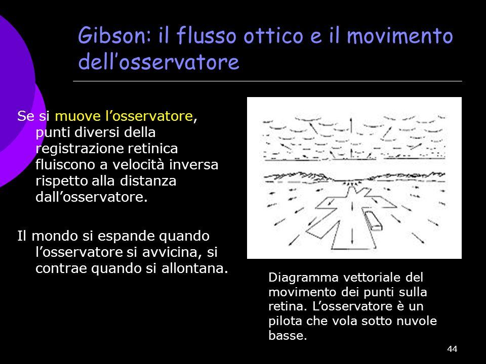 Gibson: il flusso ottico e il movimento dell'osservatore