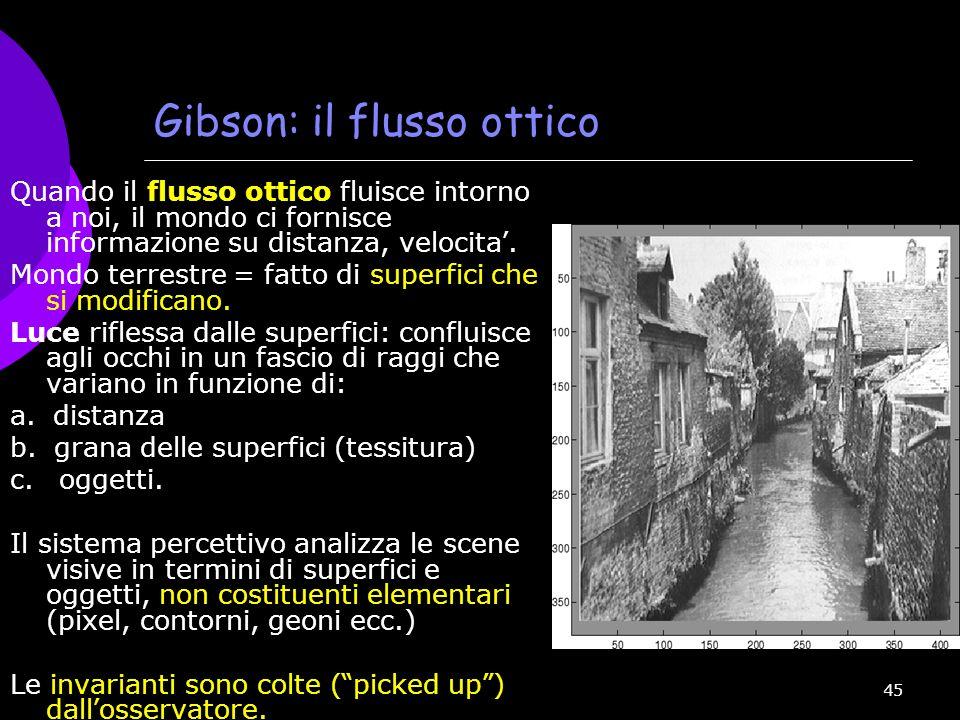 Gibson: il flusso ottico