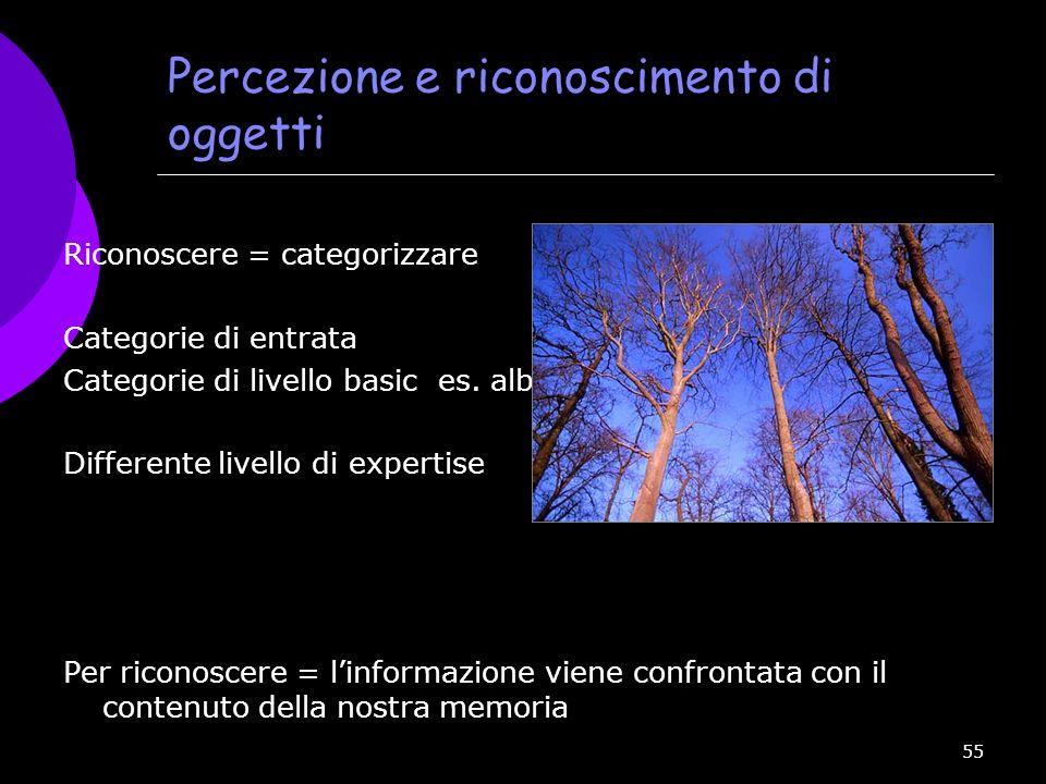 Percezione e riconoscimento di oggetti