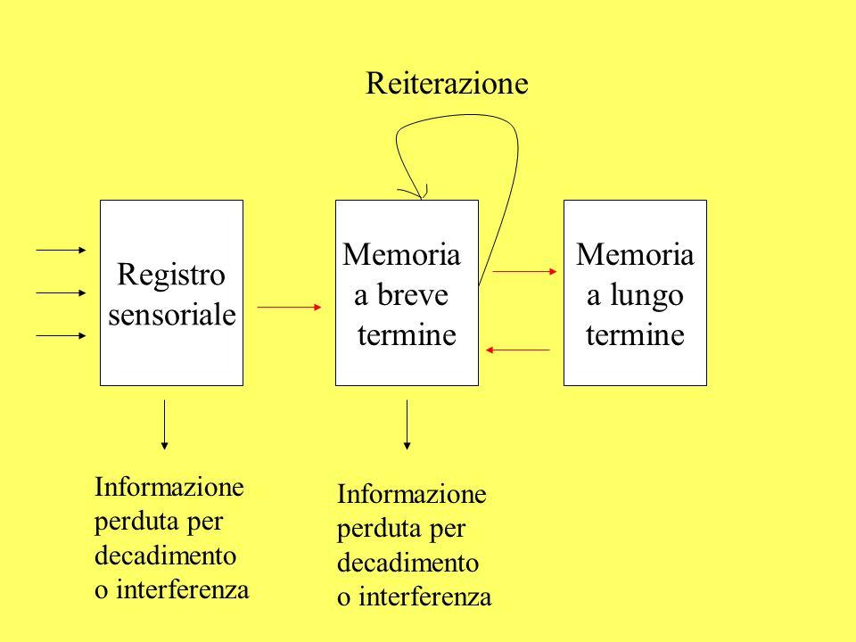 Reiterazione Registro sensoriale Memoria a breve termine Memoria
