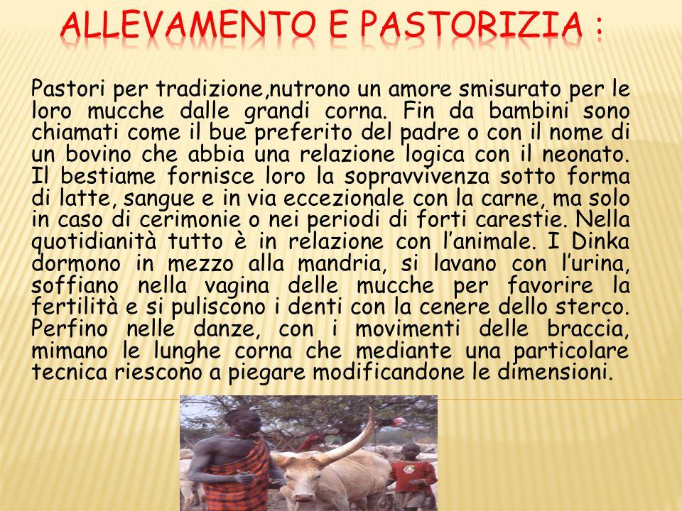Allevamento e pastorizia :