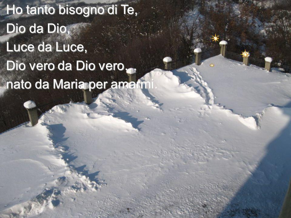 Ho tanto bisogno di Te, Dio da Dio, Luce da Luce, Dio vero da Dio vero… nato da Maria per amarmi.