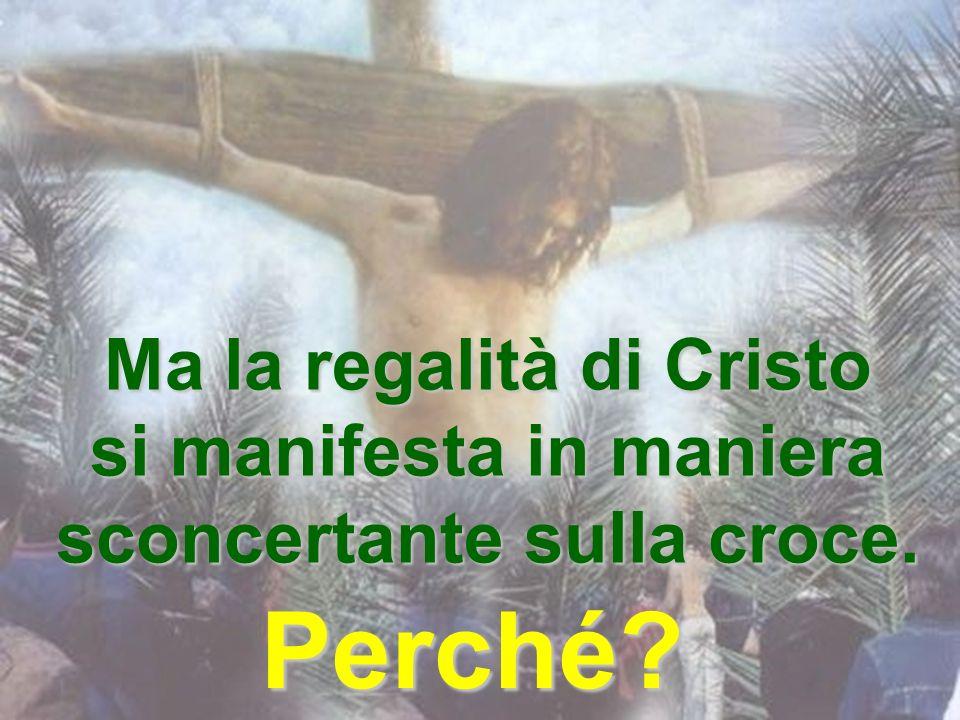 Ma la regalità di Cristo si manifesta in maniera sconcertante sulla croce.