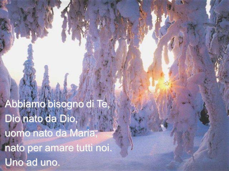 Abbiamo bisogno di Te, Dio nato da Dio, uomo nato da Maria, nato per amare tutti noi. Uno ad uno.