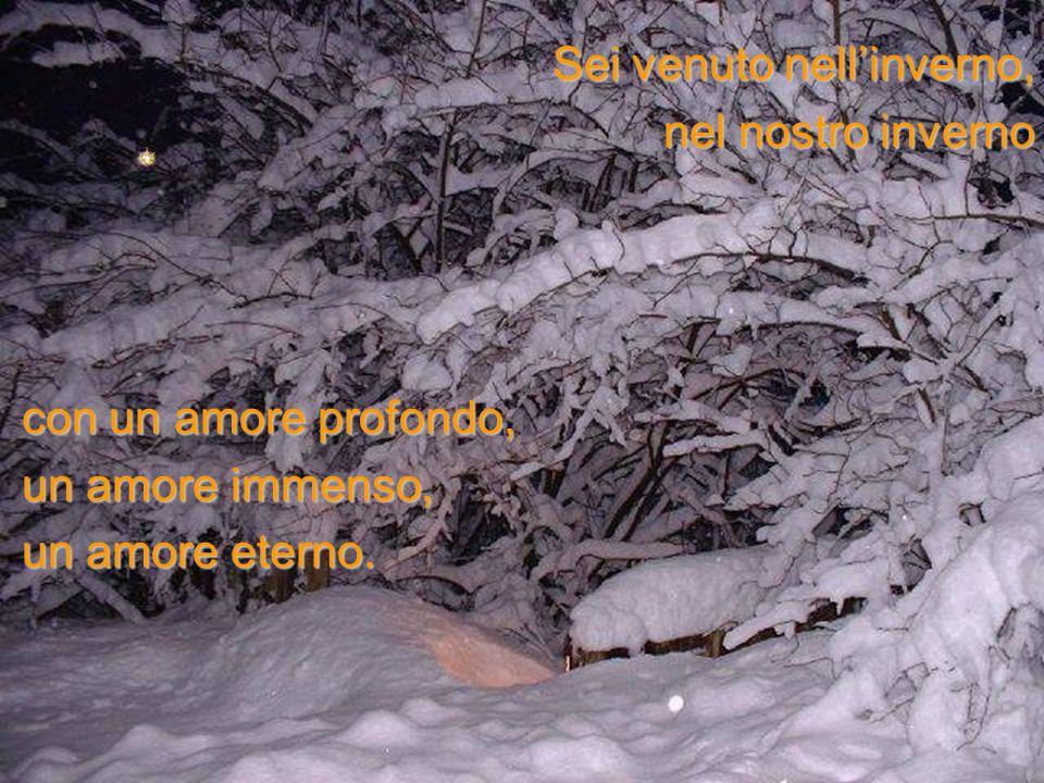 Sei venuto nell'inverno,