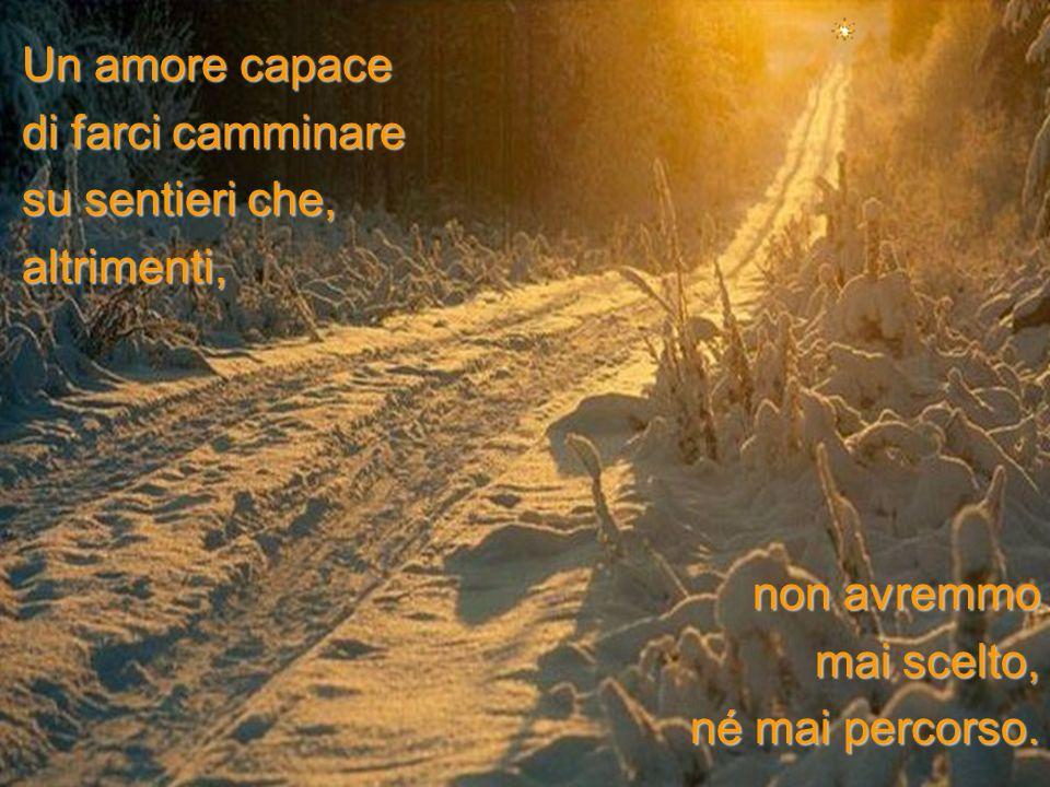 Un amore capace di farci camminare. su sentieri che, altrimenti, non avremmo.