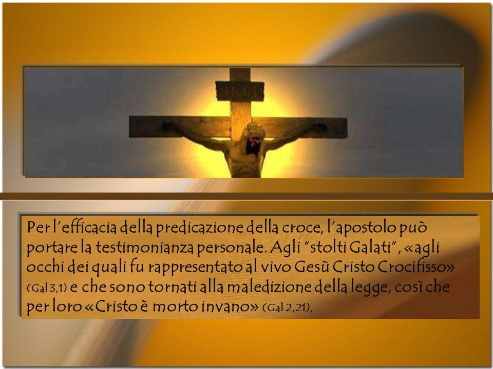 Per l'efficacia della predicazione della croce, l'apostolo può portare la testimonianza personale.