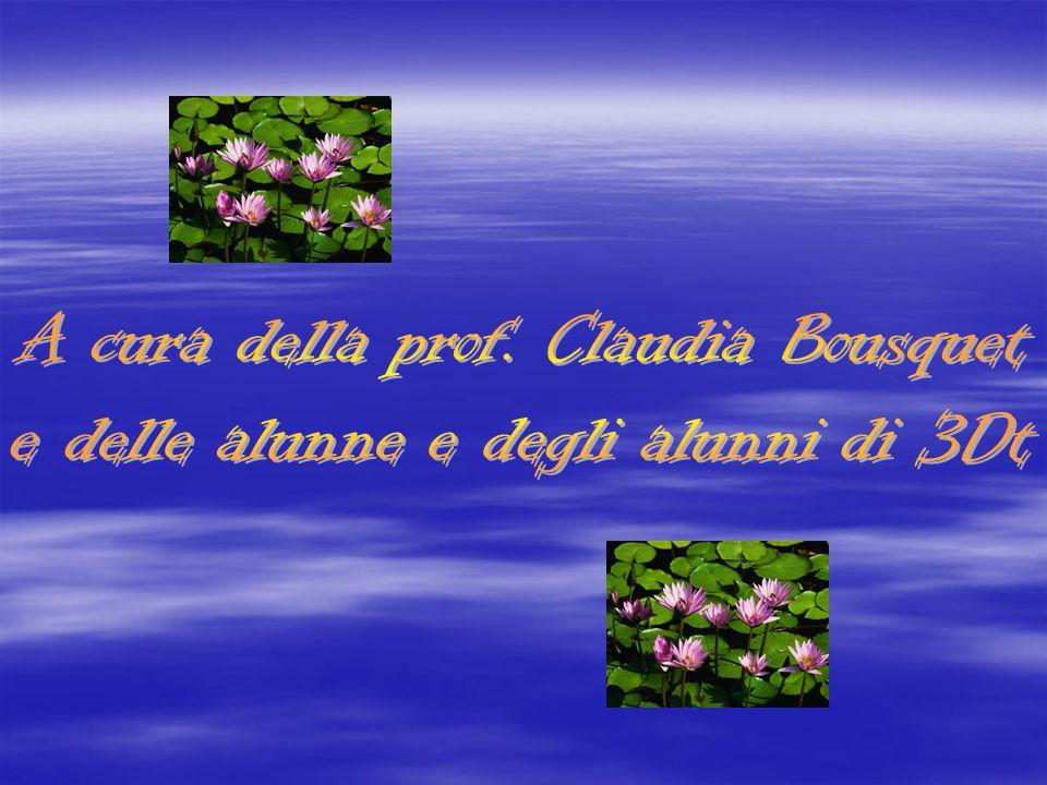A cura della prof. Claudia Bousquet