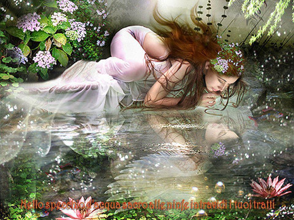 Nello specchio d acqua sacro alle ninfe intravidi i tuoi tratti