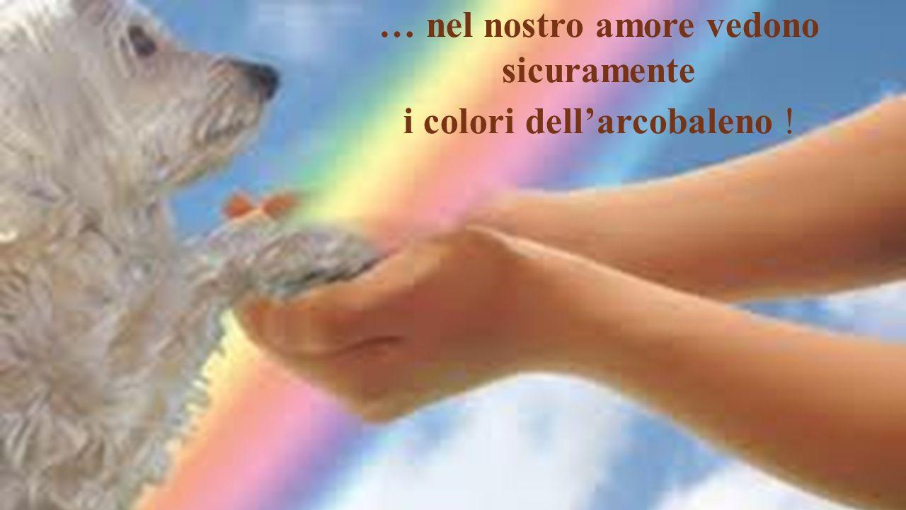 … nel nostro amore vedono sicuramente i colori dell'arcobaleno !