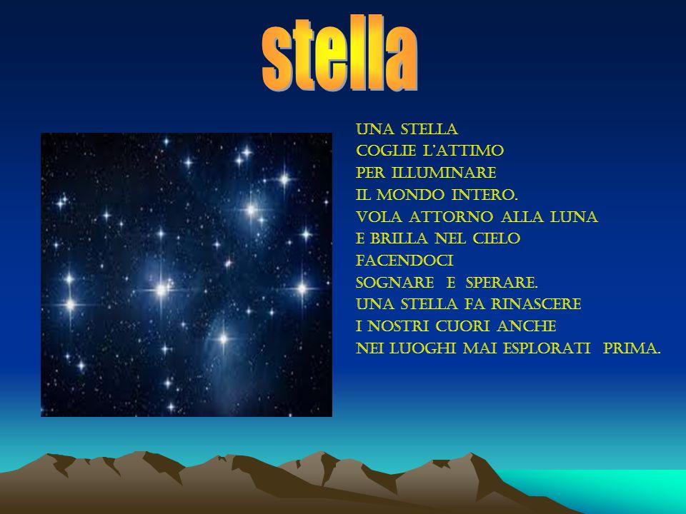 stella una stella coglie l'attimo per illuminare il mondo intero.