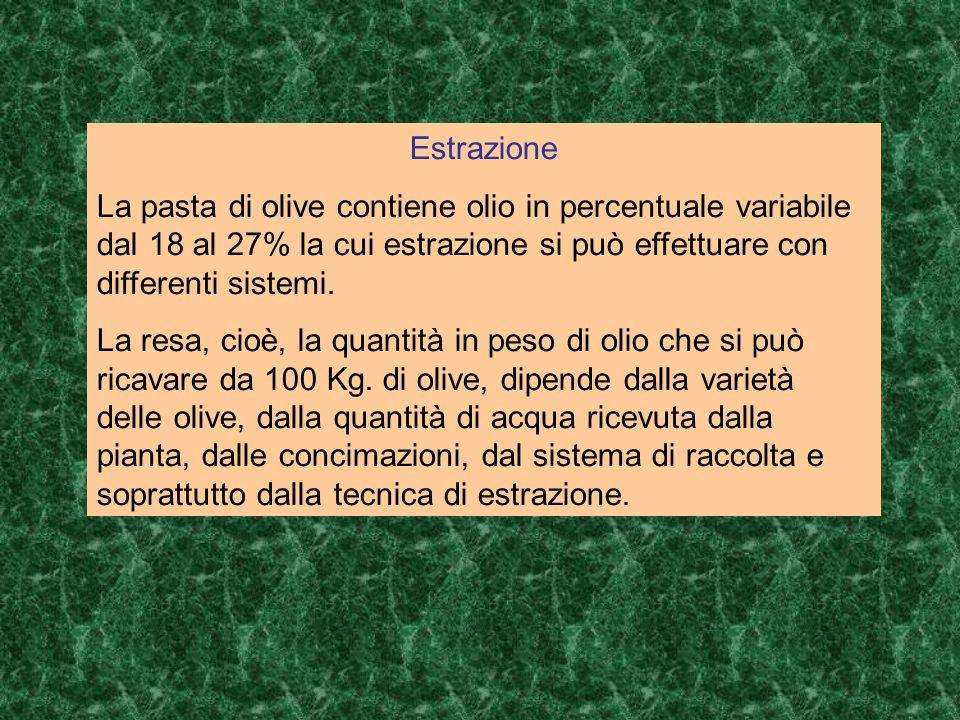 Estrazione La pasta di olive contiene olio in percentuale variabile dal 18 al 27% la cui estrazione si può effettuare con differenti sistemi.