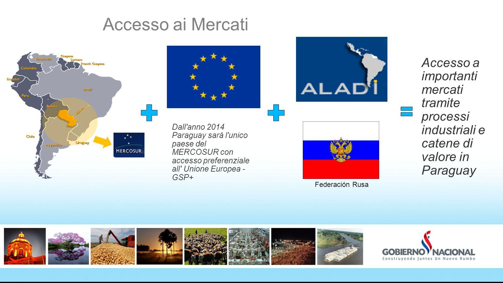 2020 Accesso ai Mercati. Accesso a importanti mercati tramite processi industriali e catene di valore in Paraguay.