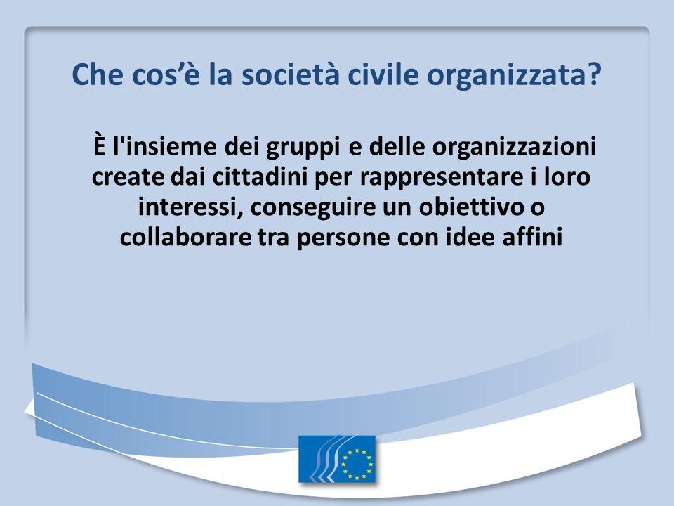 Che cos'è la società civile organizzata