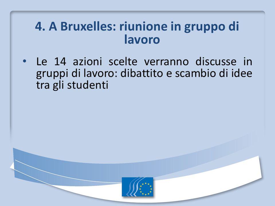 4. A Bruxelles: riunione in gruppo di lavoro