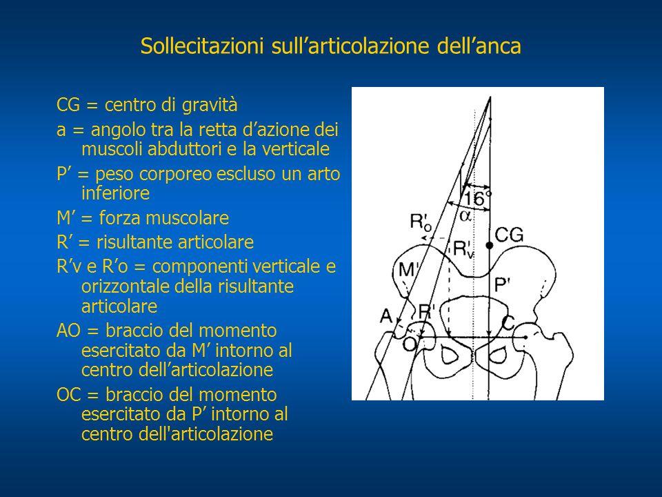 Sollecitazioni sull'articolazione dell'anca